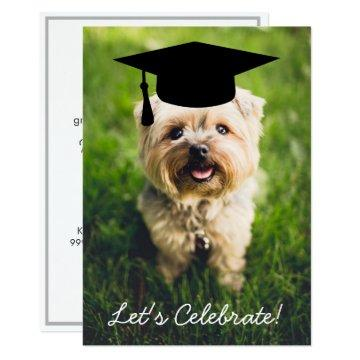 Funny Dog Photo Graduation Party - Use Your Photo Card